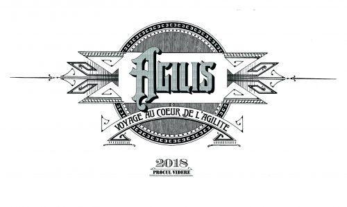 Logo Officiel d'Agilis - Voyage au Coeur de l'Agilité